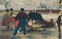 Corrida de Toros - Una cajda descubier to