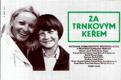 Filmový plakát - Za trnkovým keřem