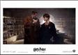 Fotoska - Harry Potter a Princ dvojí krve